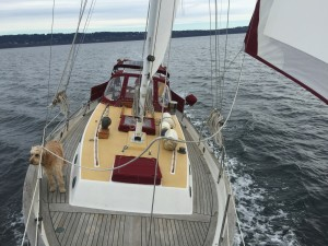 Satori back on the water after taking a six week hiatus