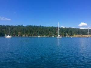Anchored in Friday Harbor next to the shipwreck